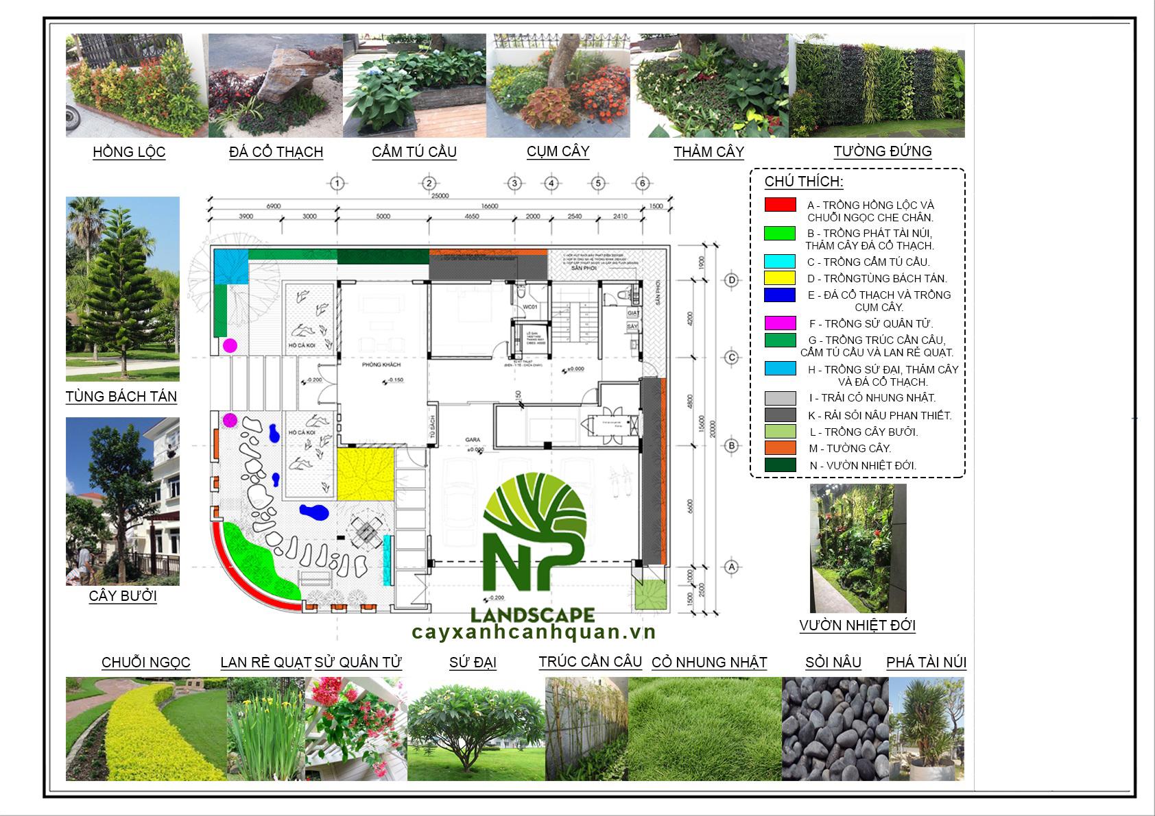 NP Landscape - Thiết kế sân vườn đẹp