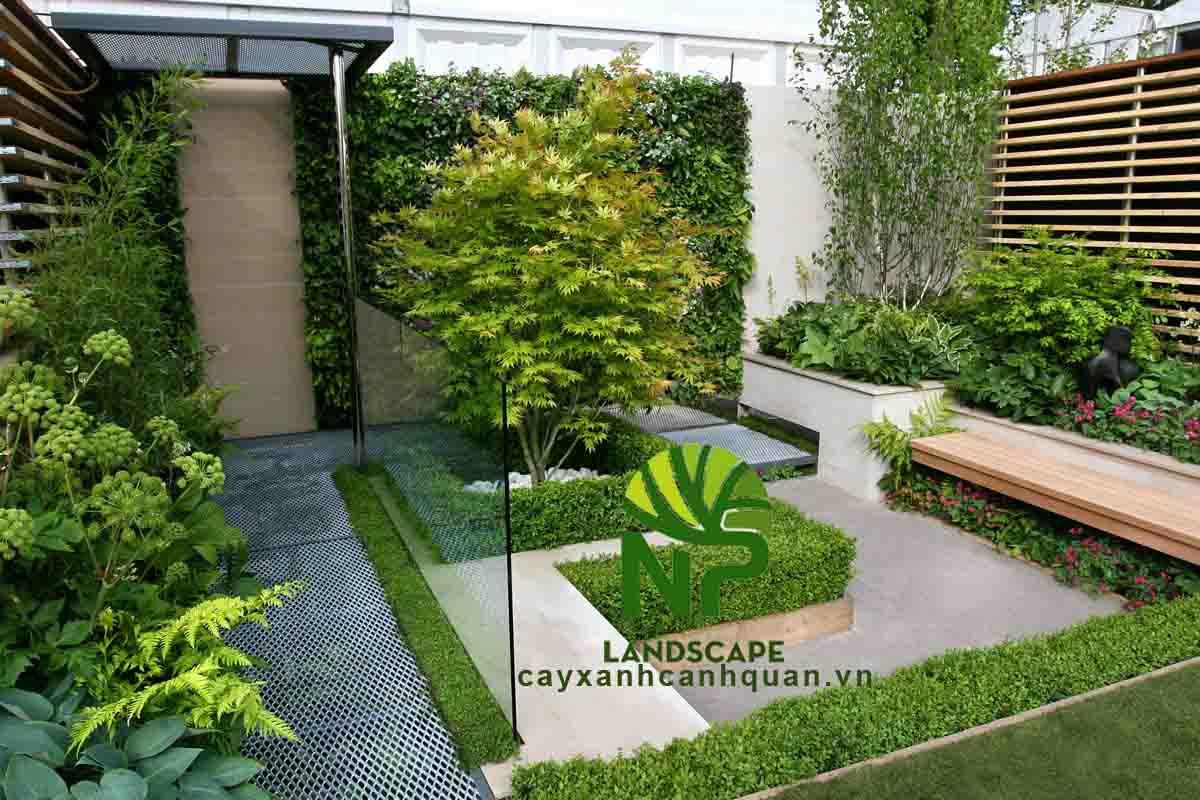 NP Landscape - Thi công sân vườn đẹp