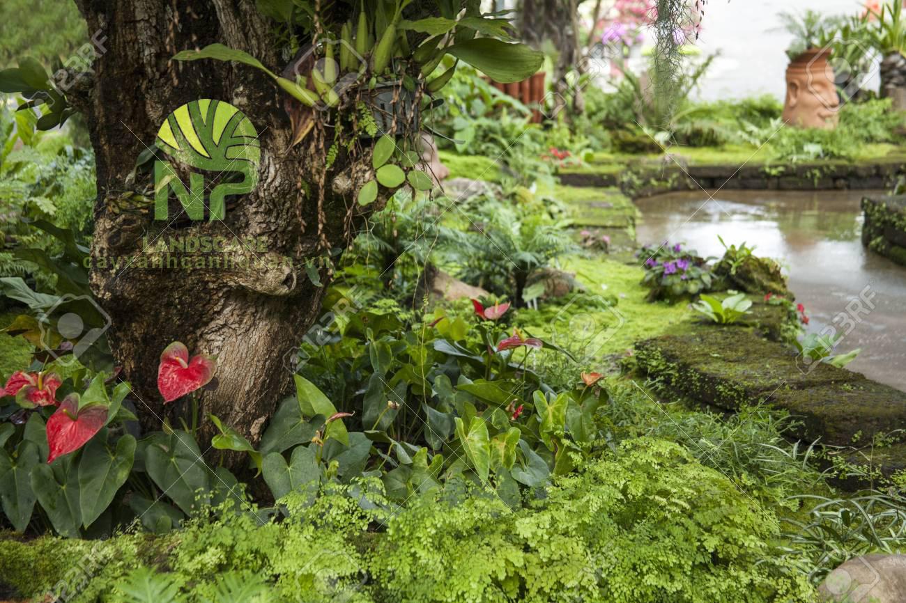 Tropical garden (10)