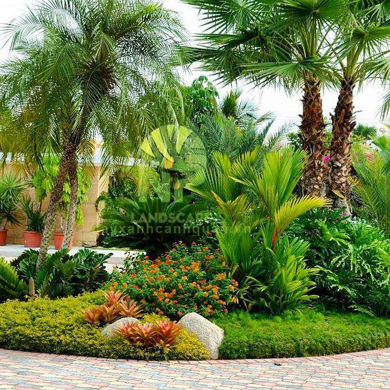 Tropical garden (12)