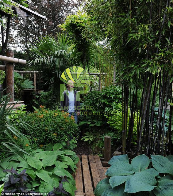 Tropical garden (16)