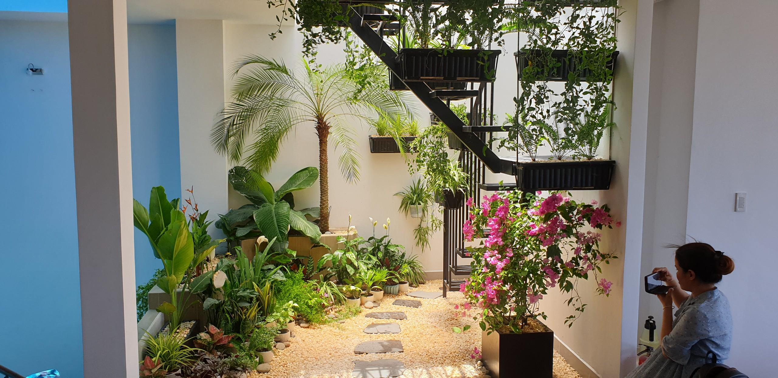 Tropical garden (32)