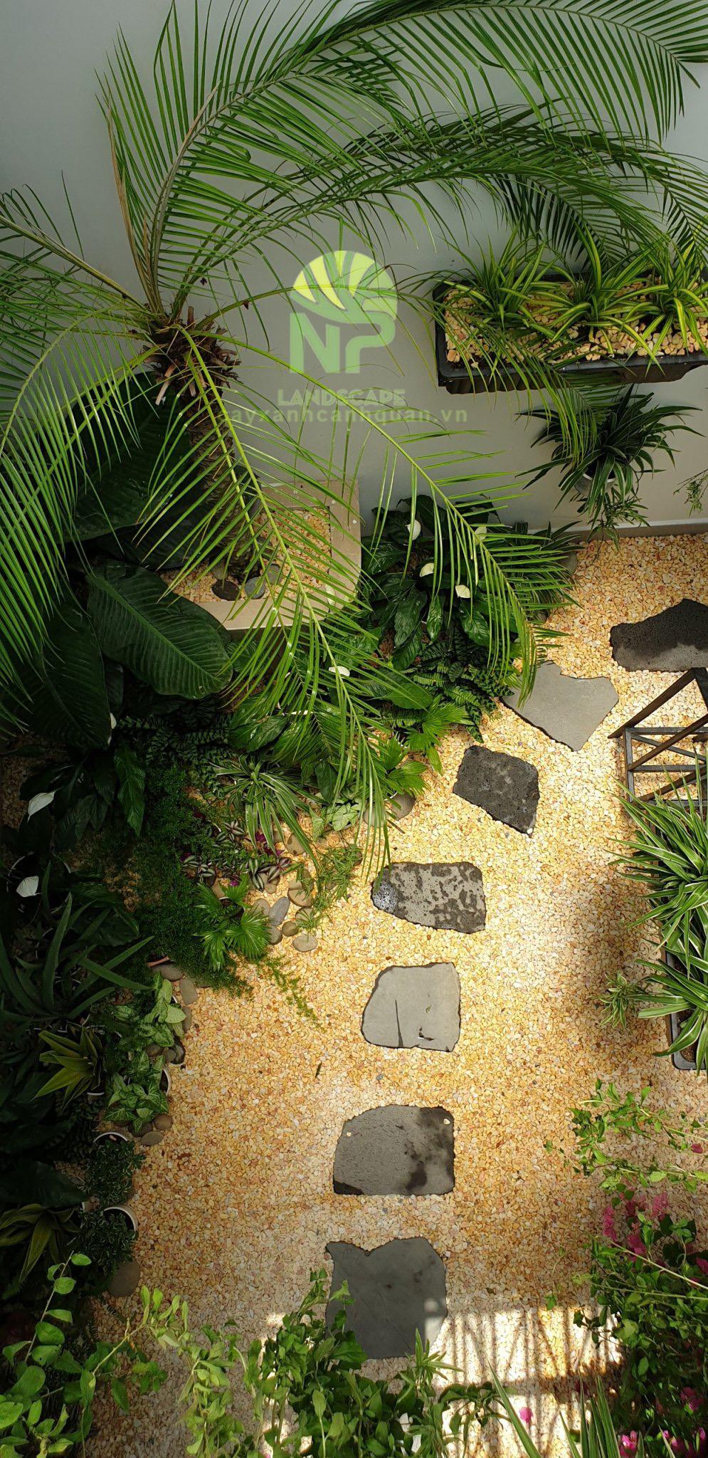 Tropical garden (30)