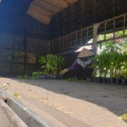 Phong ba 0935351677 (1)